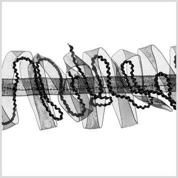 2.5 Black Sheer Braided Ribbon Trim