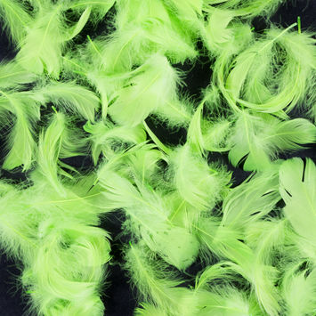 Lime Green 5 Gram Bag of Feathers