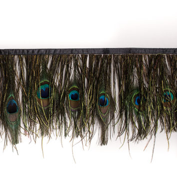 Natural Peacock Feather Fringe - 6