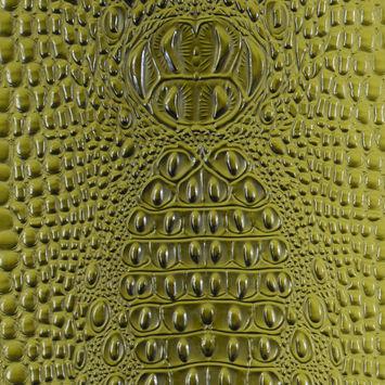 Green Crocodile Vinyl