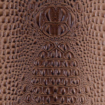 Chocolate Crocodile Vinyl