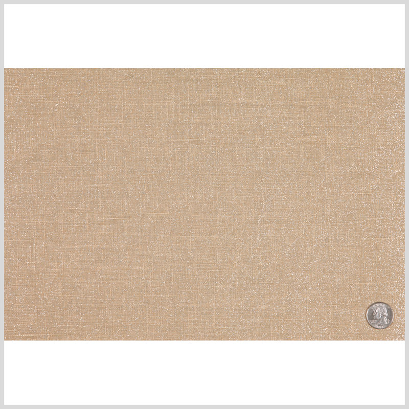 Beige/Silver Sparkle Solid Canvas - Full