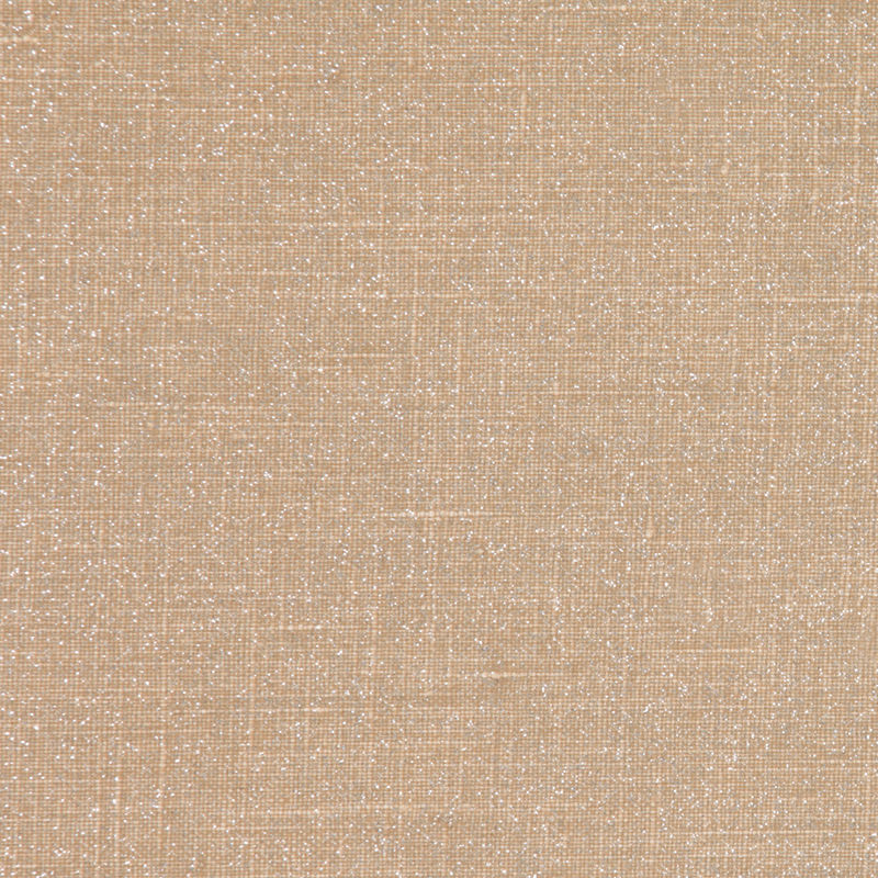 Beige/Silver Sparkle Solid Canvas